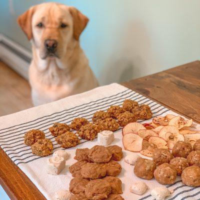 Homemade Natural Dog Treats Recipes
