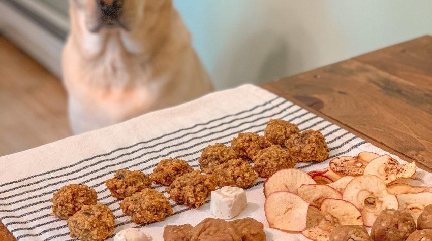 homemade natural dog treats