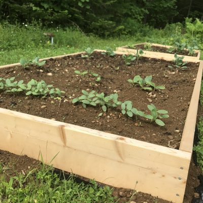 diy raised garden bed ideas