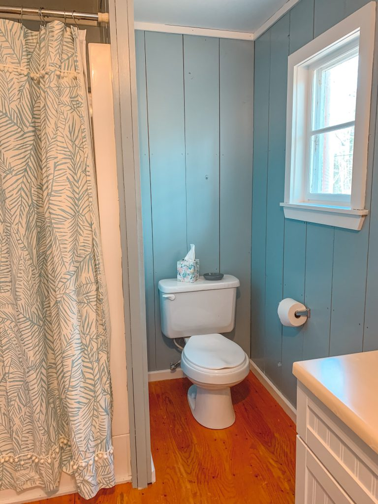 cottage bathroom painted