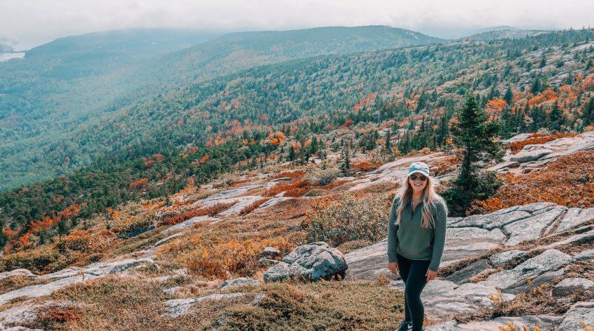 Foliage Acadia National Park