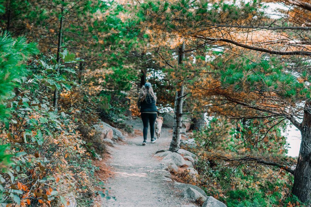 Jordan Pond Walk